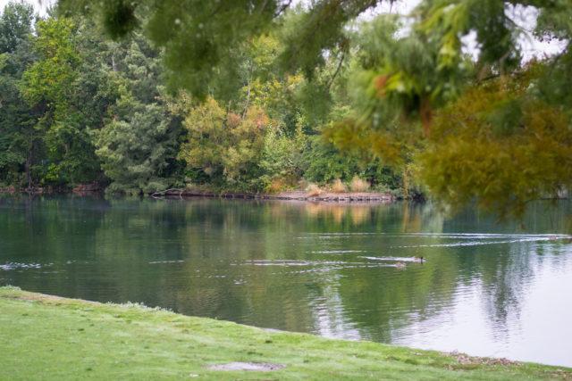 A lake on the Greenbelt near Boise State