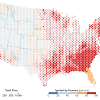 Shocking! Criminals called Humans—not lightning—trigger most wildfires (84% of Them!!!) in the United States.