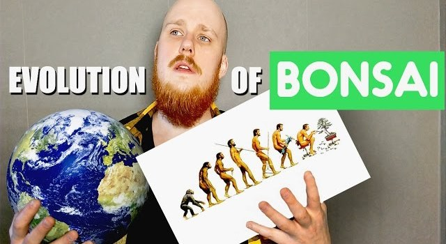 Evolution Of Bonsai