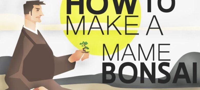 How to Create a Mame Bonsai