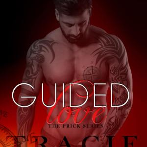Review: Guided Love and a #Giveaway