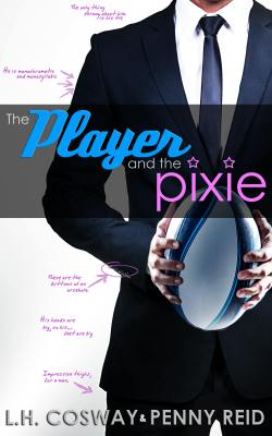 player and the pixie cover