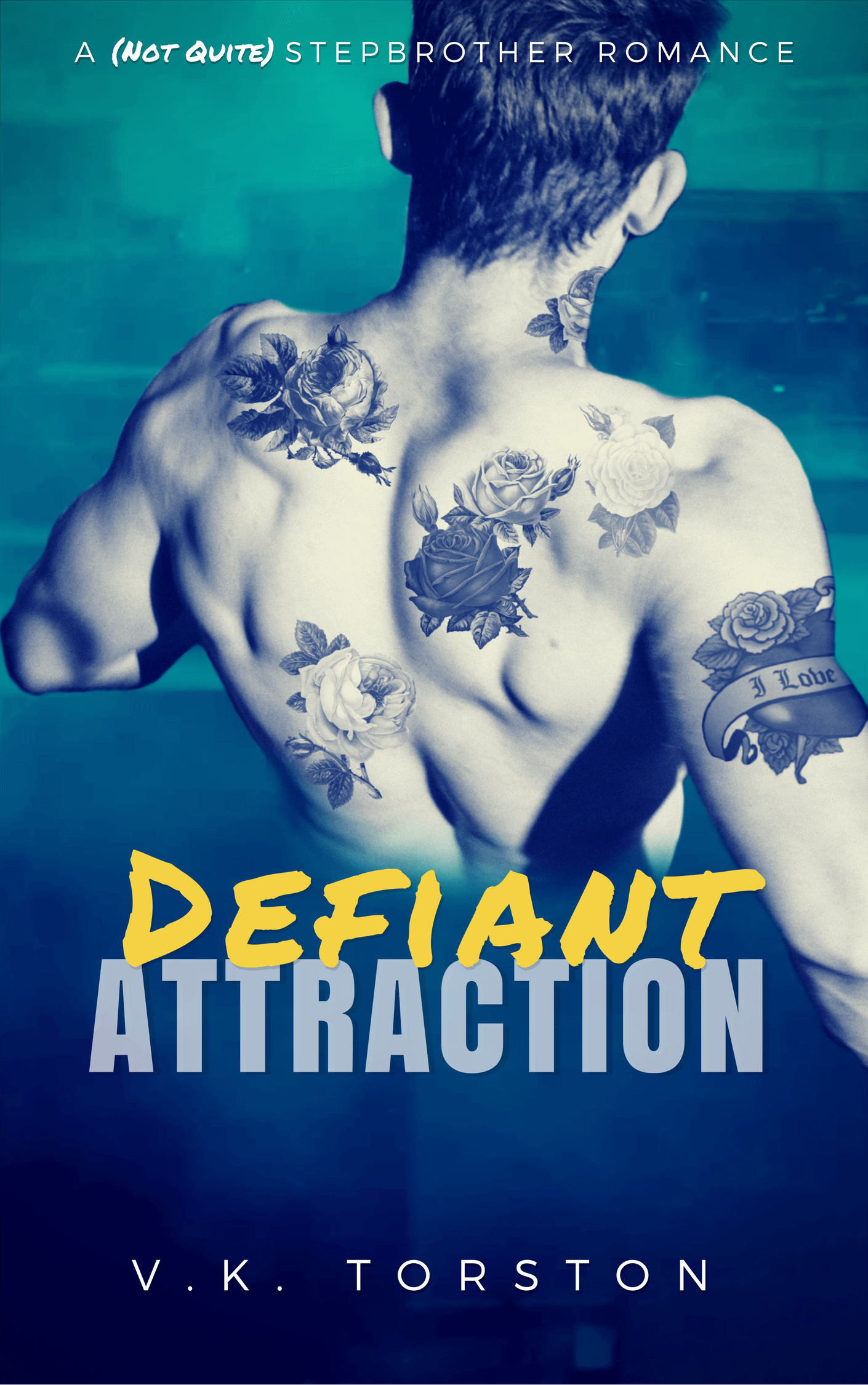 Defiant Attraction by V.K. Torston:Review