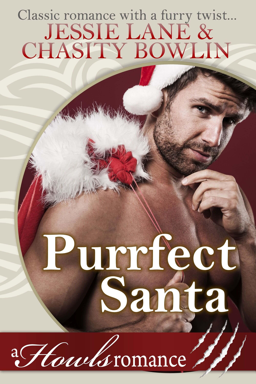 Purrfect Santa