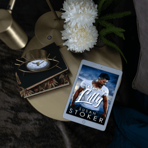 Searching for Lilly: Cover Reveal