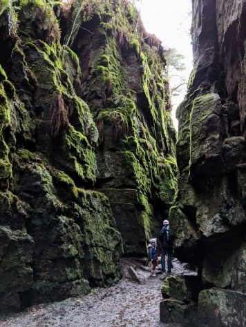Into the chasm - Lud's Church