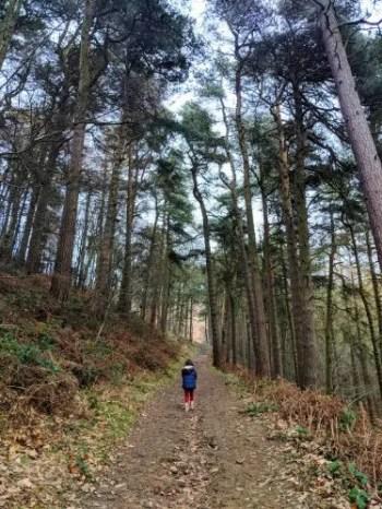 Woodland path - Public Footpath from Baulk Lane - Jane Eyre Trail