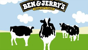 ben and jerrys cows