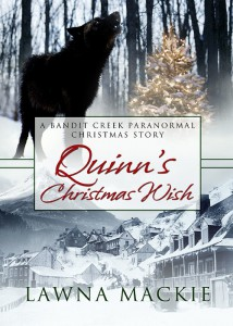 Cover for Quinn's Christmas Wish by Lawna Mackie