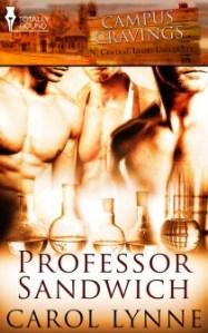 Review – Professor Sandwich by Carol Lynne