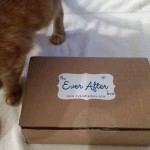 Ever After box with orange tabby