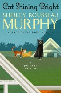 Cat Shining Bright cover image