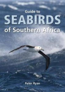seabirds of SA