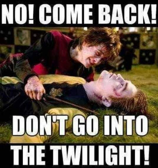 Image may contain: one or more people and meme, text that says 'NO! COME BACK! DON'T GO INTO THE TWILIGHT!'