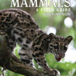Indian Mammals : A Field Guide buy