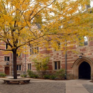 Your Res College Courtyard