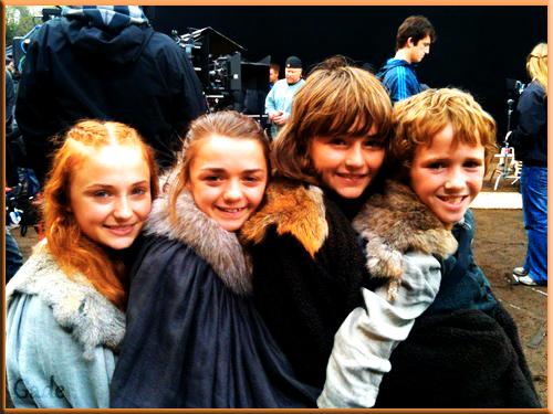 stark siblings