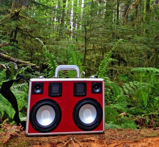 Camping Canada BoomCase Victoria Forest Jungle Wood Music Anywhere Best Bluetooth speaker Loud PA System Jordan 17 Case Sneaker Nike Red Rare