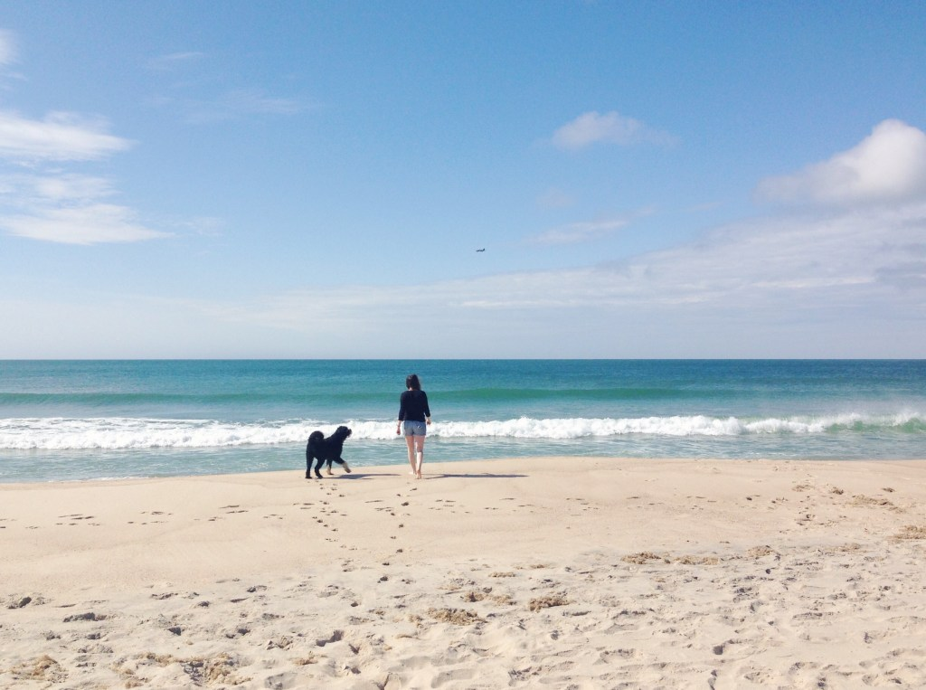 Best Day Trips from Boston - The Boston Day Book   New England Travel - Nantucket, MA