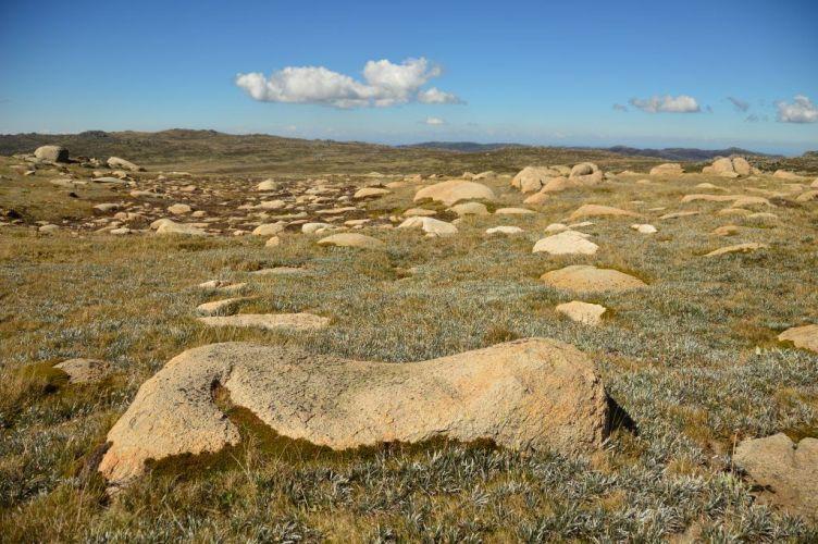 rocks and ground on the walk up mount kosciuszko australia