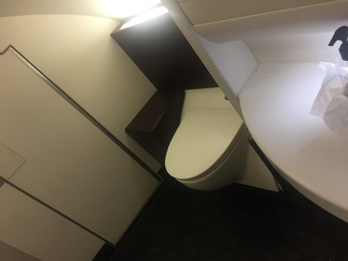 bathroom in malaysia airlines business class