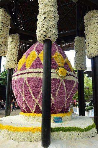 flower display at medellin botanic gardens