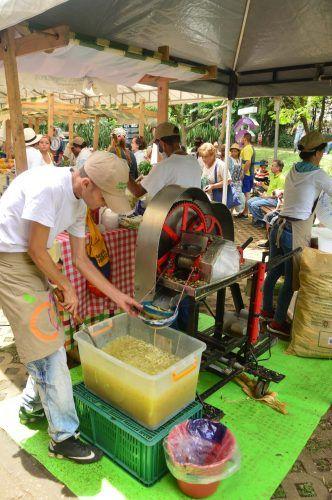 el poblado farmers market medellin