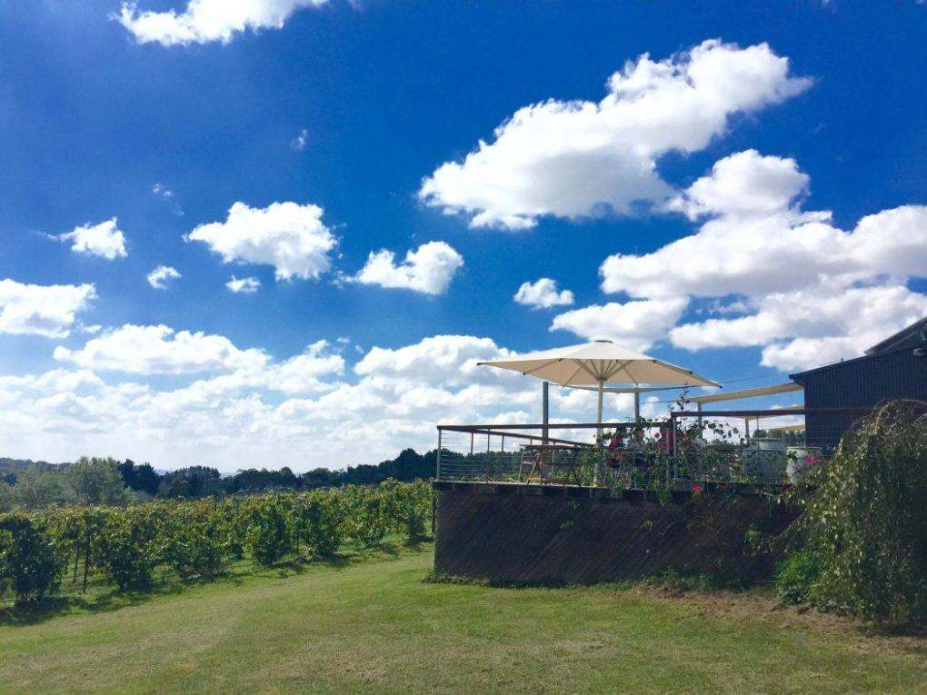The outdoor seating area at Lark Winery with a view of the vineyards