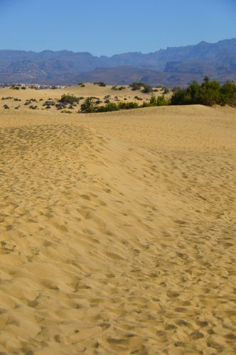 maspalomas gran canaria things to do