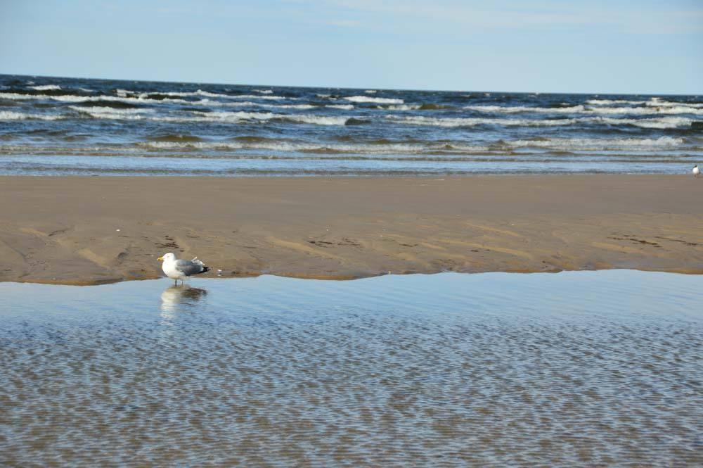beaches-of-jurmala