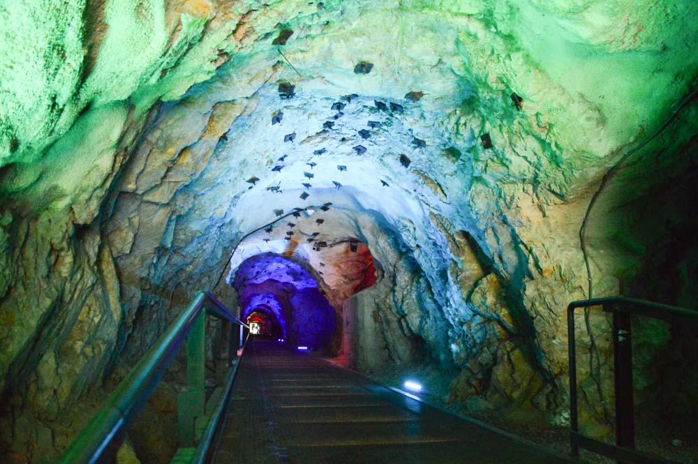 austria_graz_schlossberg-tunnel