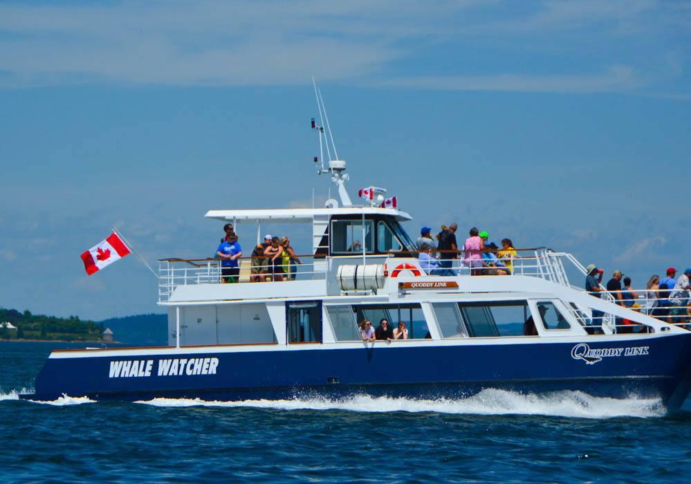 canada_new-brunswick_standrews-whale-watcher-boat