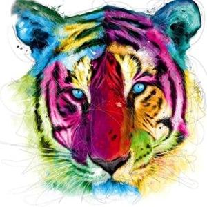 Diamond painting kleurrijke tijger