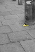 Dying banana peel