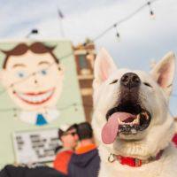 WONDER BAR'S YAPPY HOUR 2017 BEGINS:  HERE'S THE INFO...