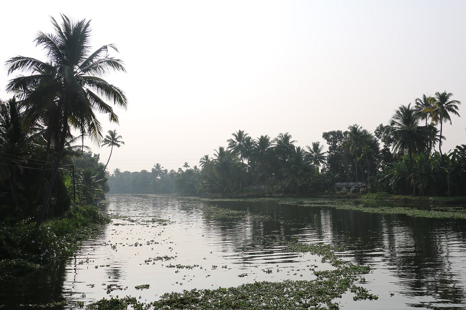Backwaters_26