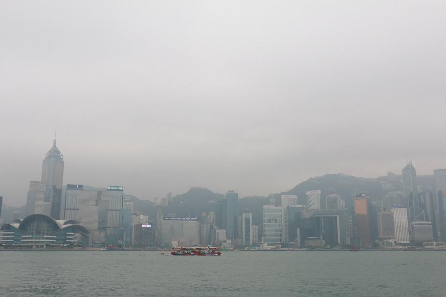 Hong_Kong_Skyline_2_thebraidedgirl