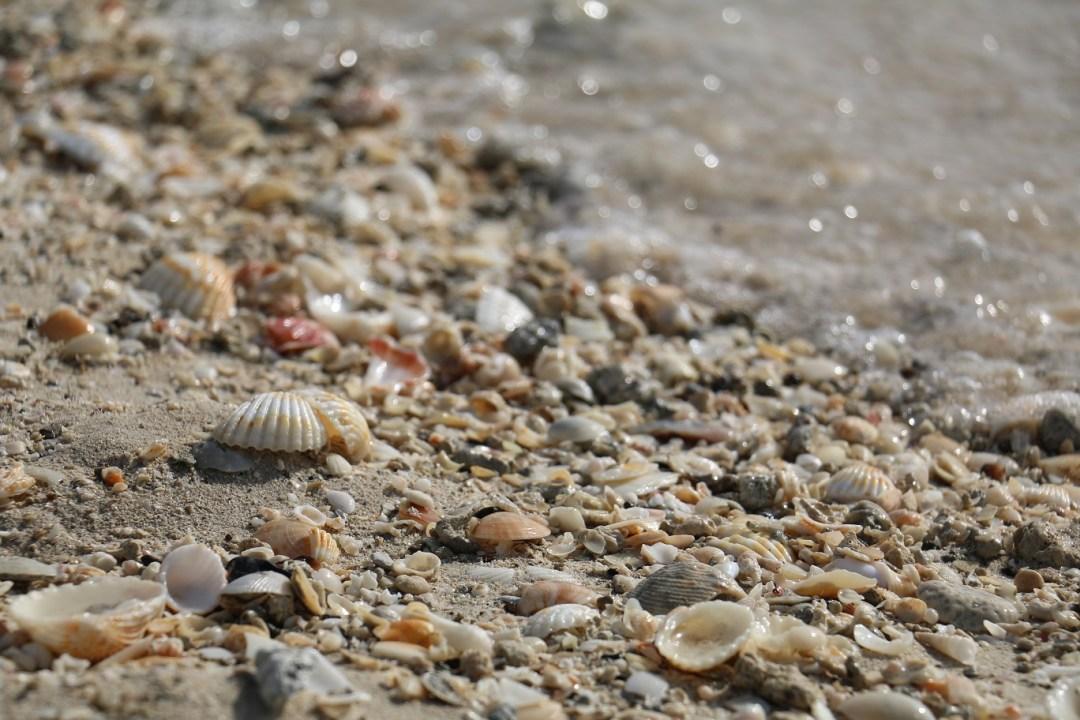 Dubai_Burj_Al_Arab_Beach_2_thebraidedgirl
