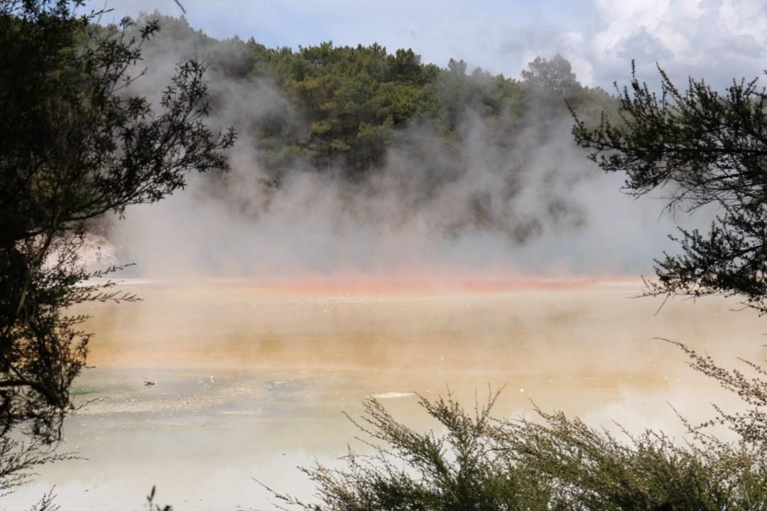 Wai O Tapu | Rotorua | thebraidedgirl