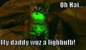 Glowing kitties, more than just a novel night light!
