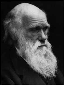 Charles Darwin. Photo credit: Wikimedia Commons. Shared under Creative Commons License 3.0