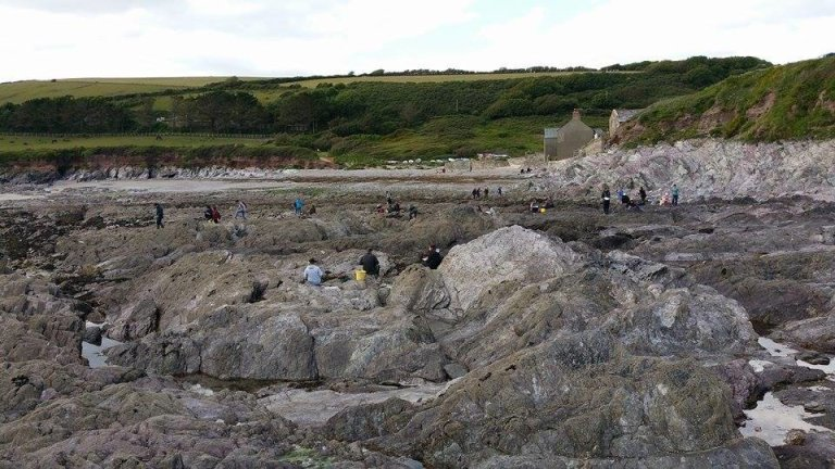 First year Marine Biology students exploring the rock pools. Photo by Jack Davis