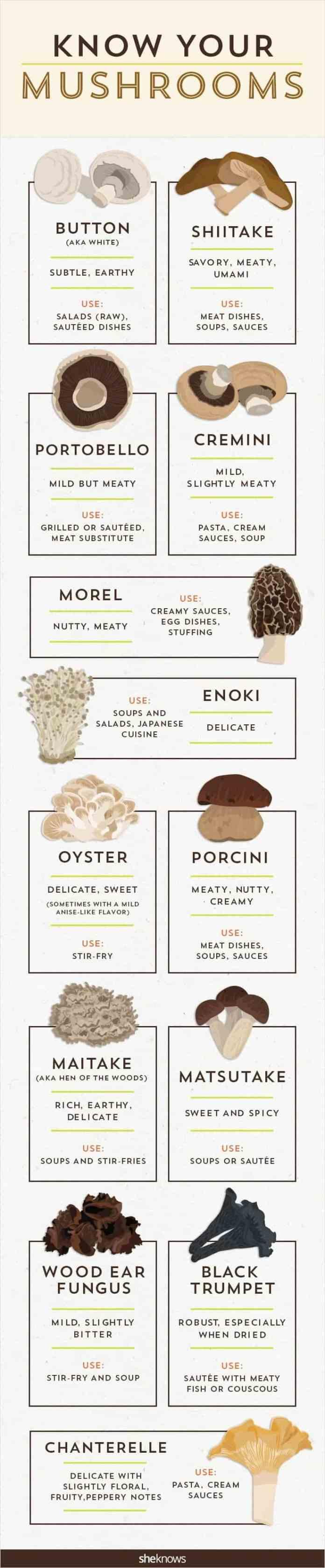know mushroom