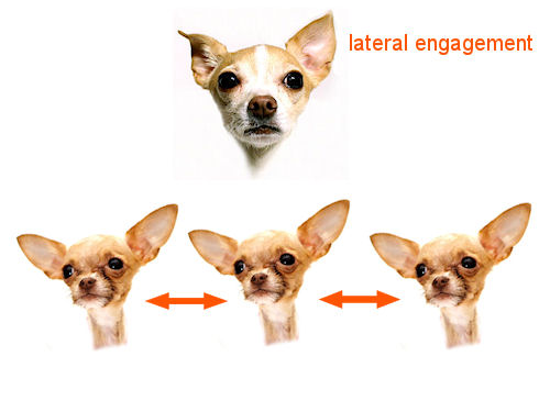 Engagament: Lateral Action