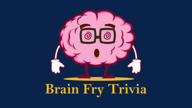 Stevie Stats Official Statement Addressing The Brain Fry Trivia Scandal