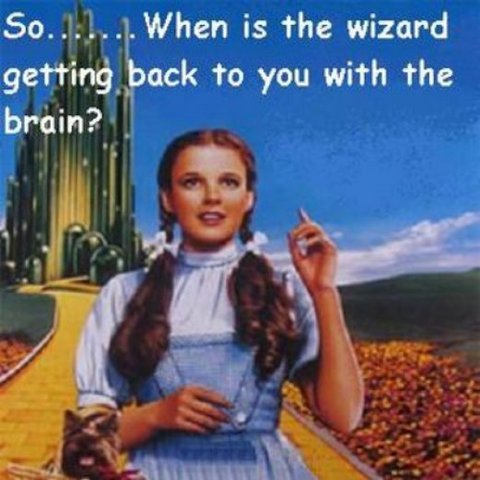 wizard-of-oz-dorothy-and-toto