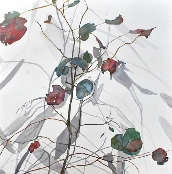 A watercolour painting of long, spindly branches and multicoloured leaves against a white backdrop.