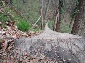 A Bridge Cut from One Tree