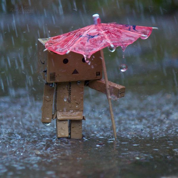 It was raining! ©2012-2016 Pamba