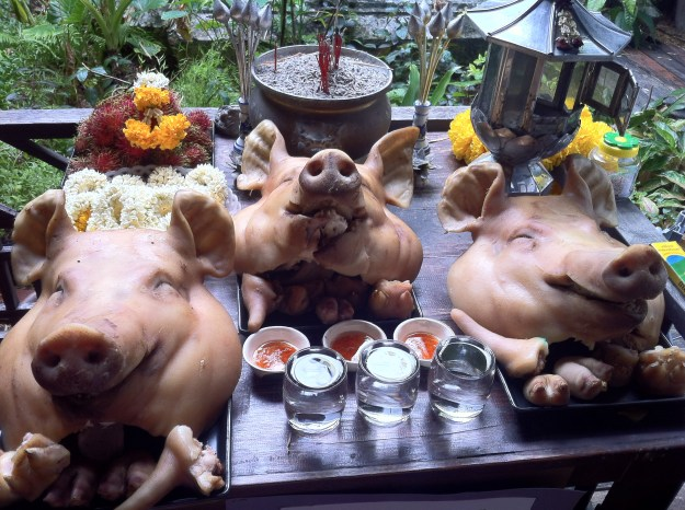Don't look if you're squeamish. These pig heads are real. In Bangkok, Thailand.